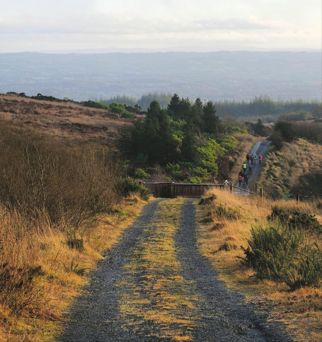 Slieve Beagh, County Monaghan