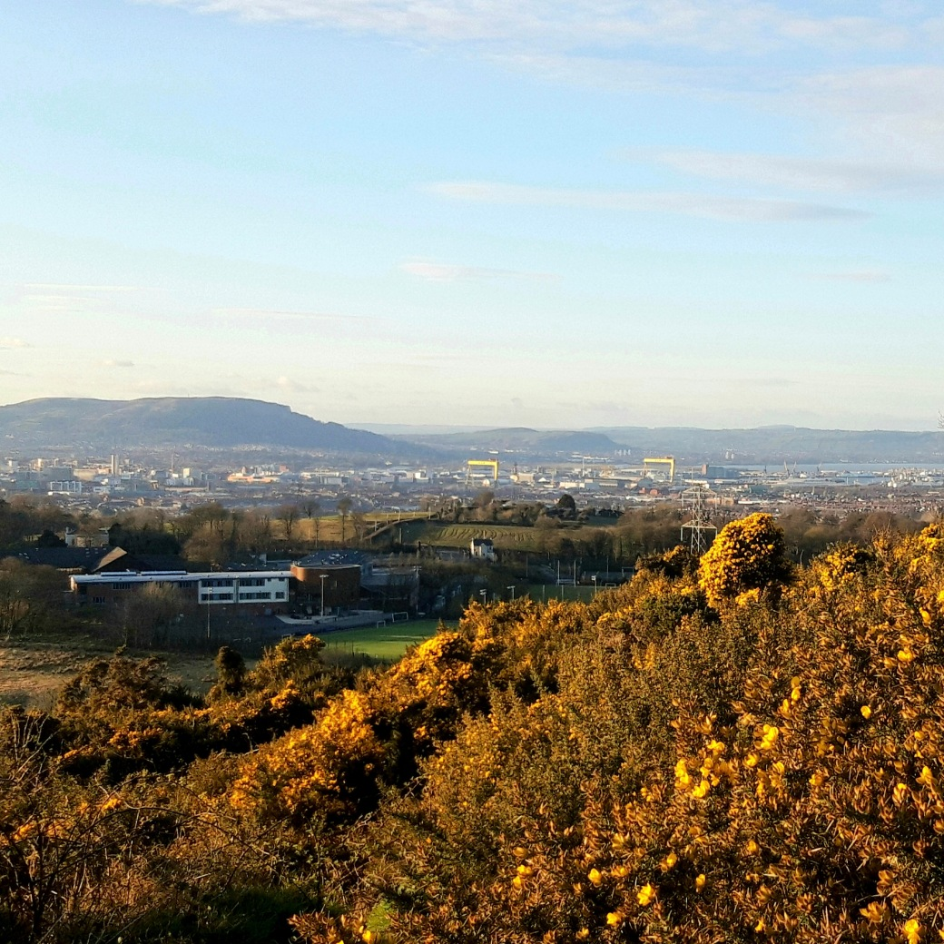Belfast from Lisnabreeny Rath