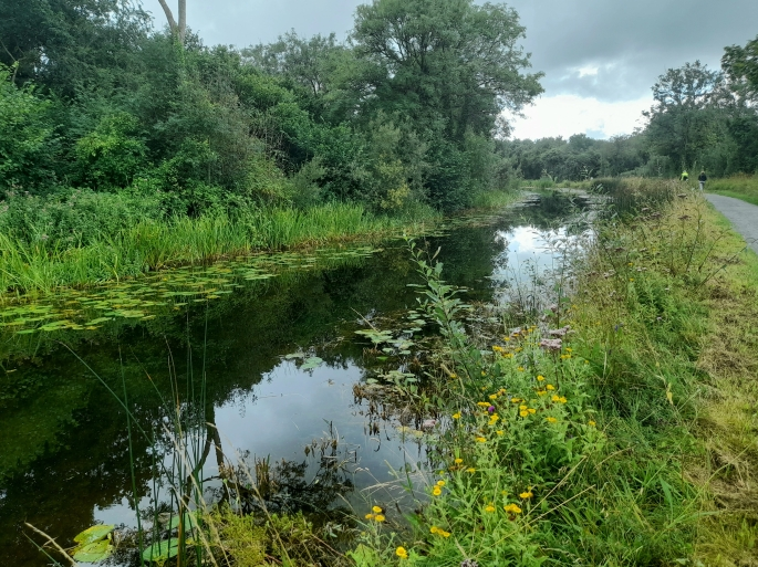 Royal Canal, County Kildare